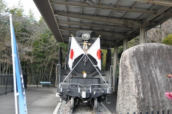 D90 012 (560x372)
