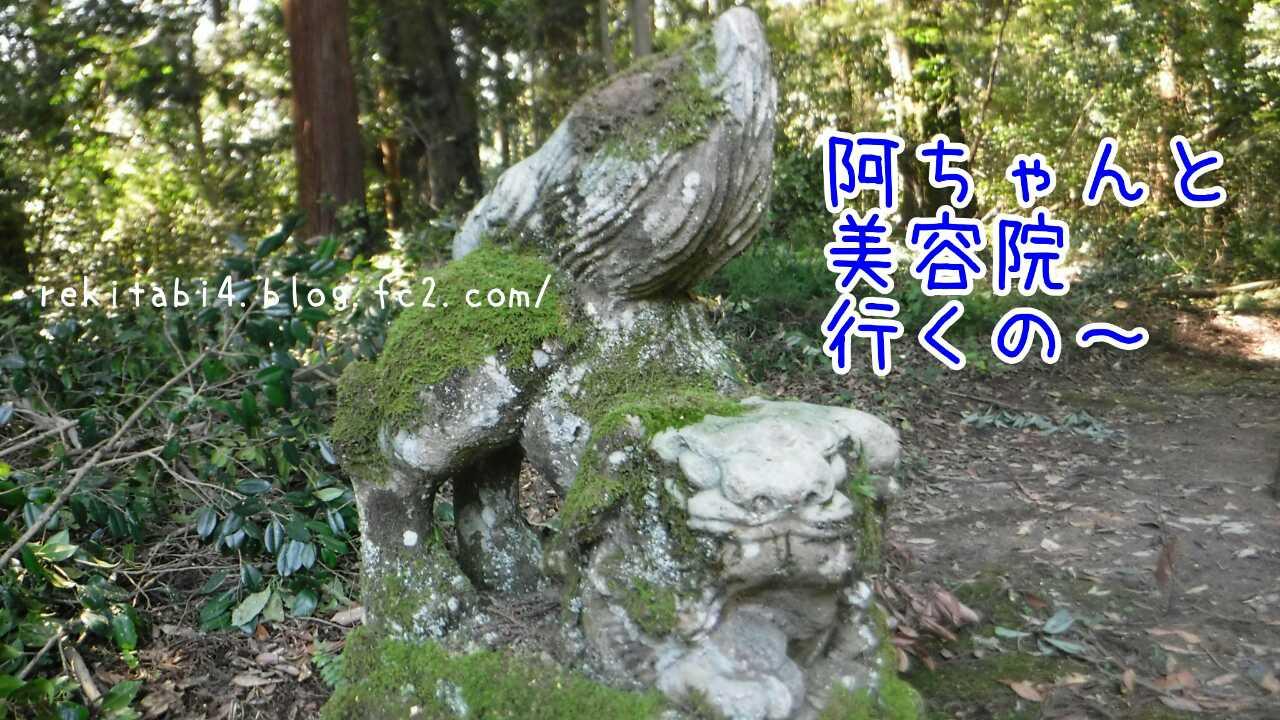 20161028220139221.jpg