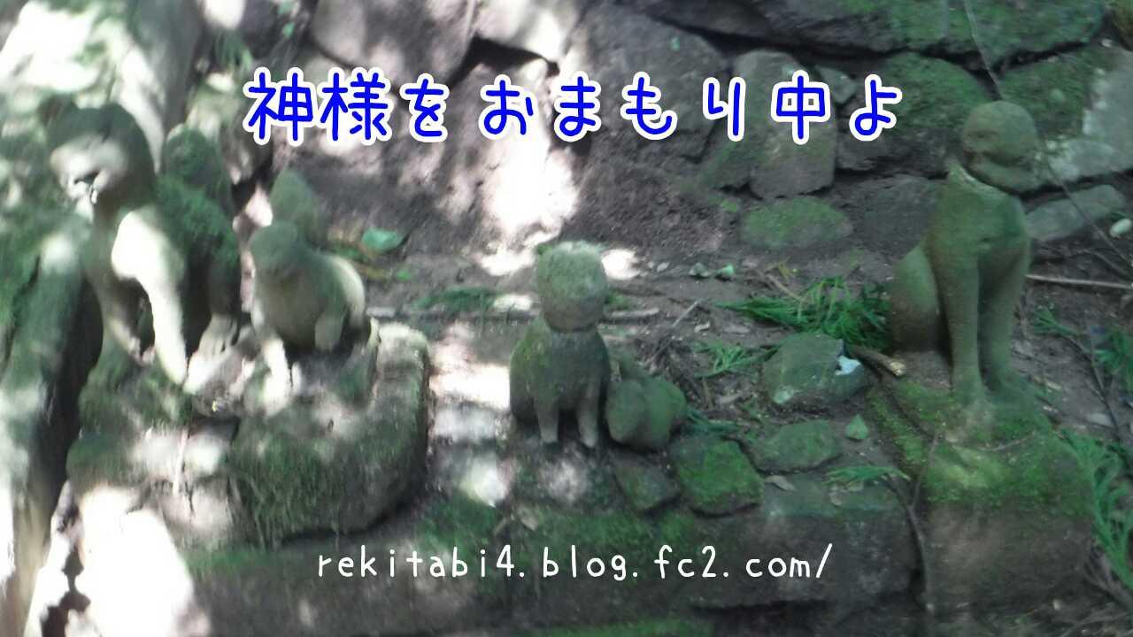 20161101035638789.jpg