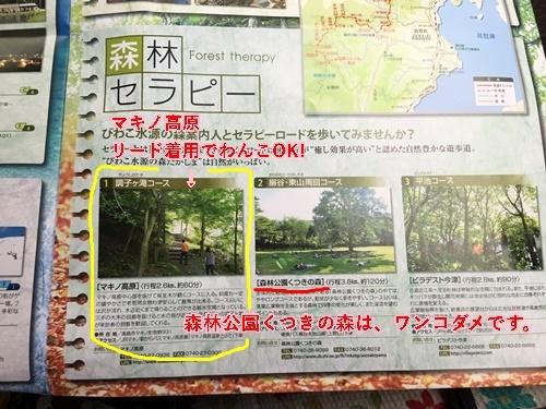 マキノ高原・調子ヶ滝コースを散策