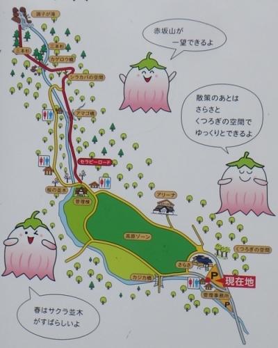 調子ヶ滝3