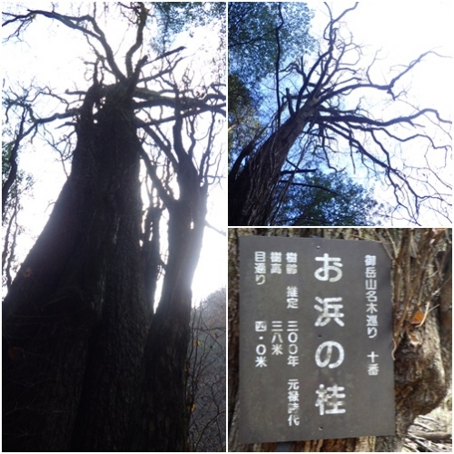 綾広の滝2