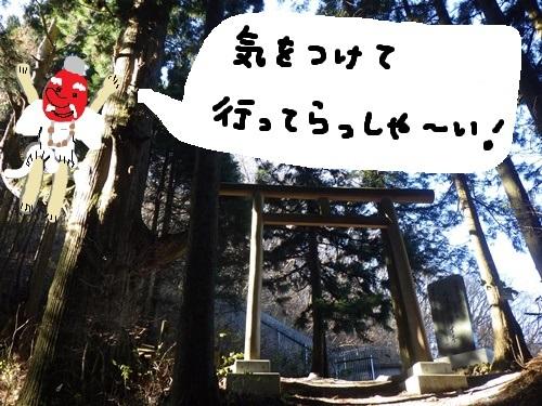 天狗の腰掛け杉1
