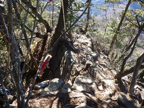 滝子山19