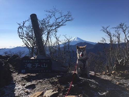 滝子山山頂1