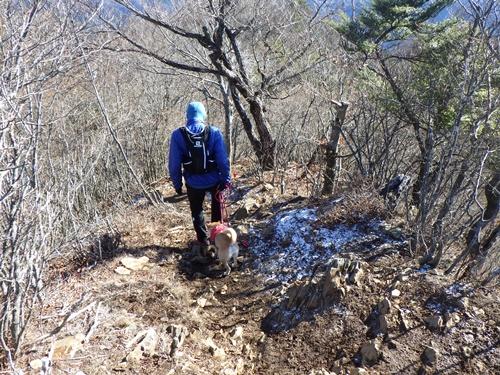 滝子山に登ってきました②(山頂→鎮西ヶ池→三丈の滝→下山)