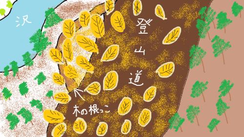 木の根っこ2
