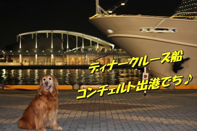 サム君きぃちゃんお楓ちゃんプール神戸夜景 004