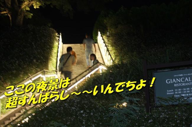 サム君きぃちゃんお楓ちゃんプール神戸夜景 044