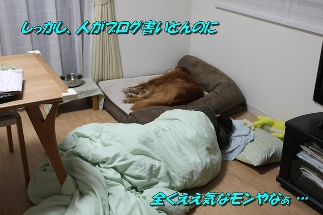母子爆睡 006