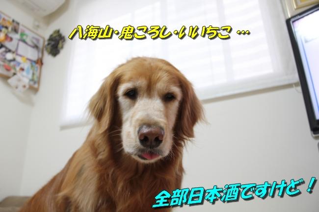 ひよこちゃん表情 014