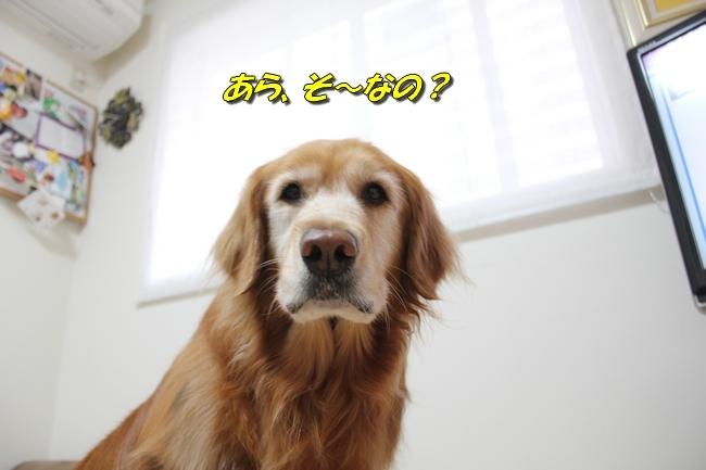 ひよこちゃん表情 0171