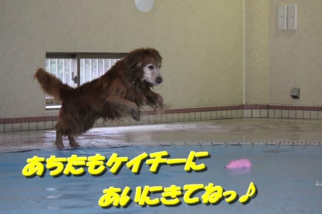 プールと表情 056
