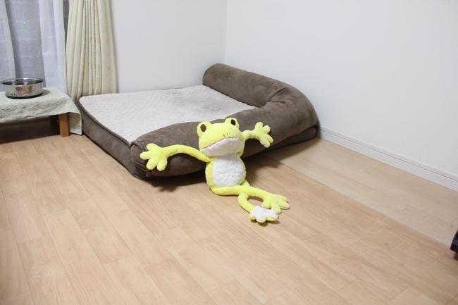シュレッダー黄色カエル 017