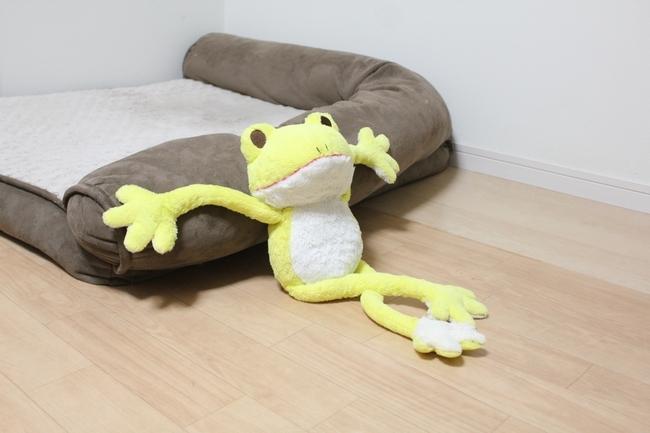シュレッダー黄色カエル 019