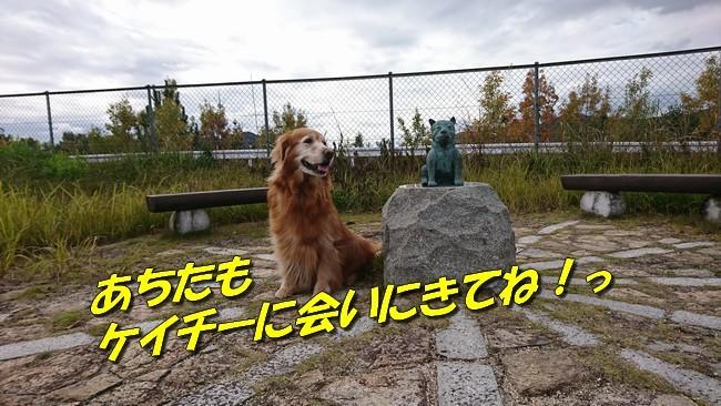 DSC_1644.jpg