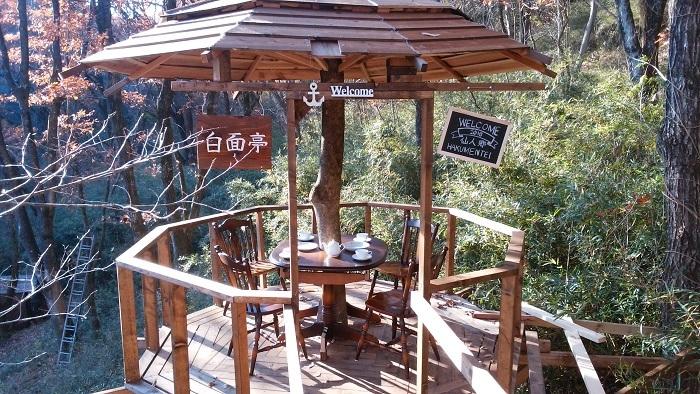 tree-cafe-12.jpg
