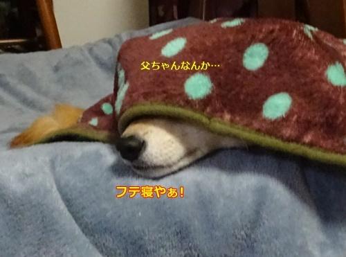 2ふて寝や