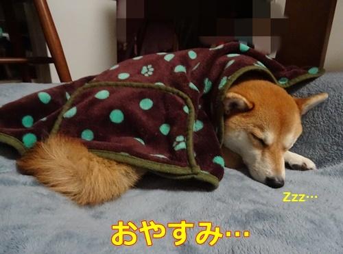 1おやすみ