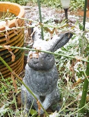 ウサギ雪メーター