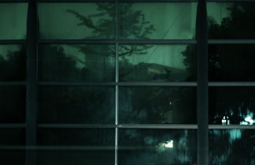 フリー画像・夜の森縮小