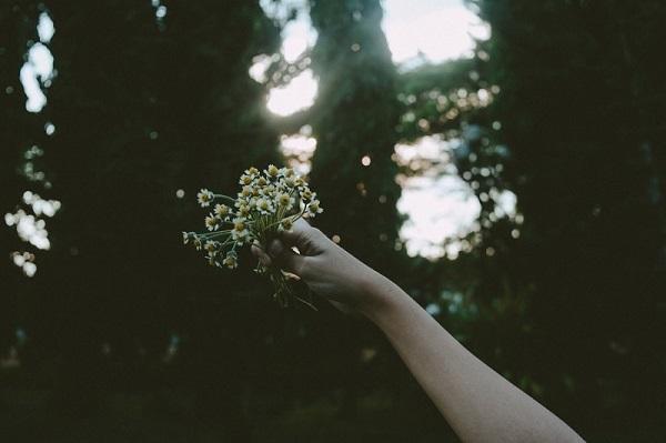 フリー画像花を持つ手