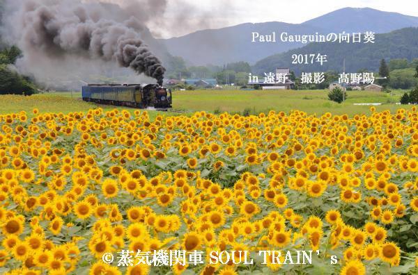 070A2824_convert_20161202100307_convert_20161202102055.jpg