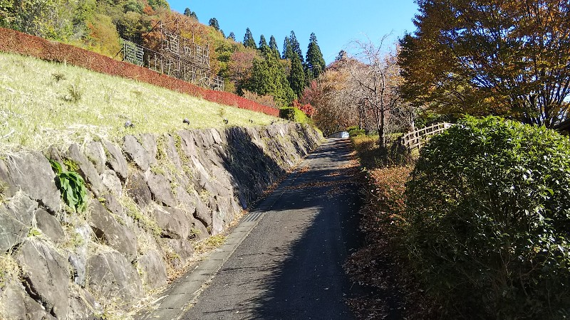 道の駅霊山たけやま花見スポットへの道2018