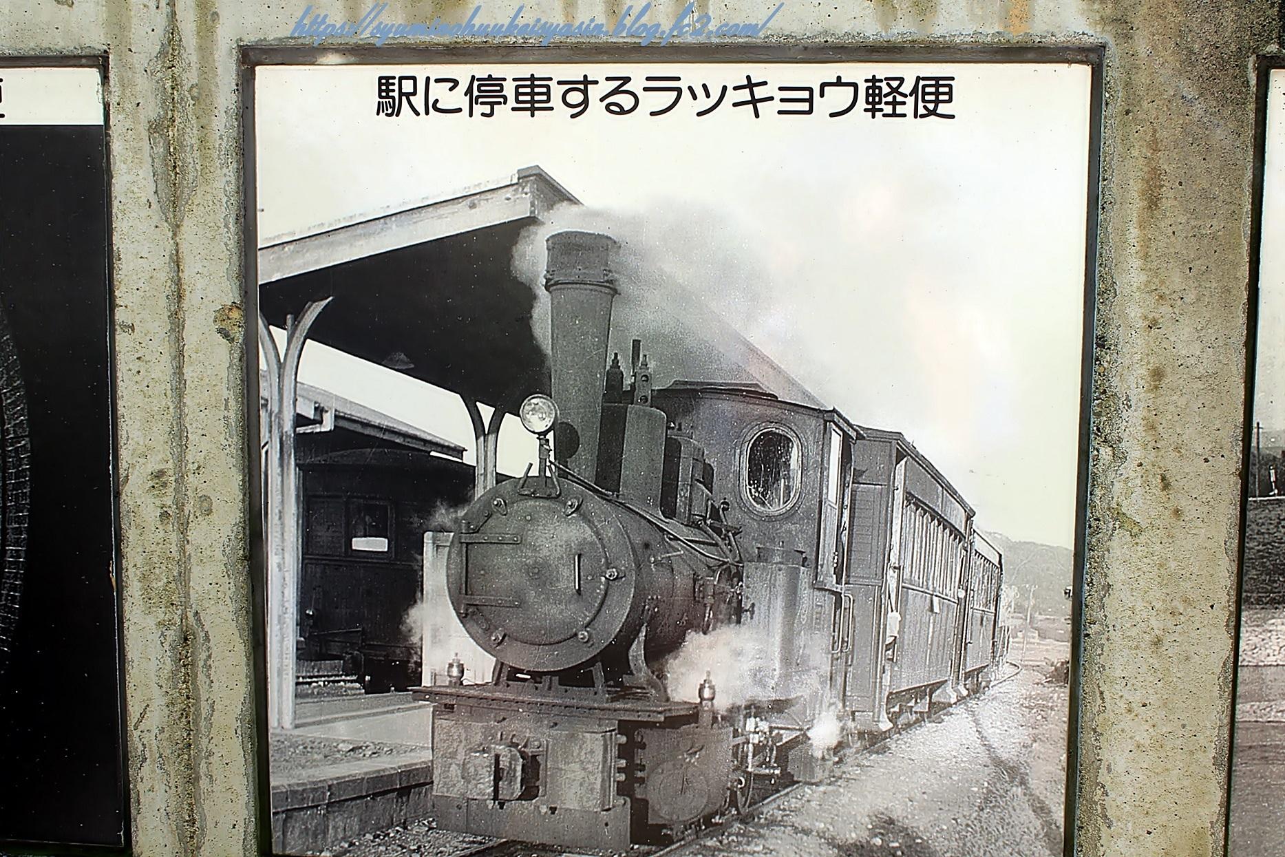 010_8674.jpg
