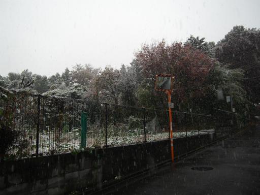 20161124・11月なのに初雪1-11・7時02分