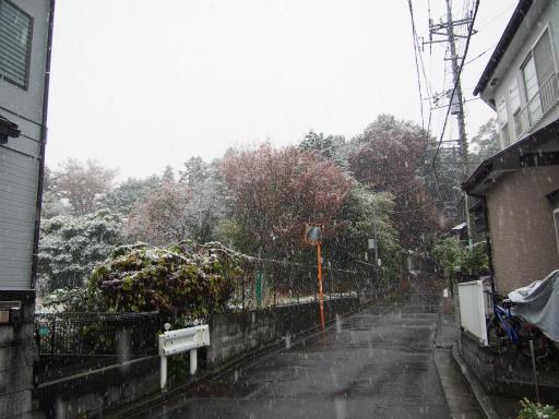 20161124・11月なのに初雪1-09・7時02分