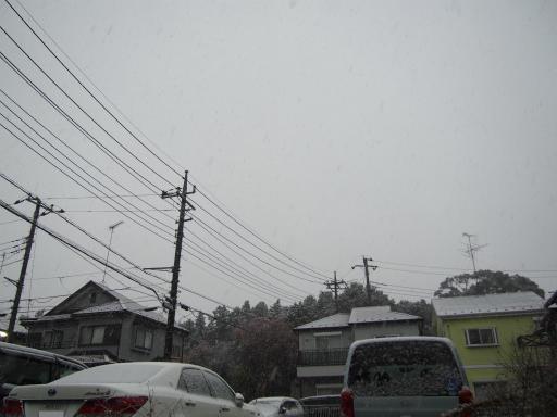 20161124・11月なのに初雪1-08・7時00分