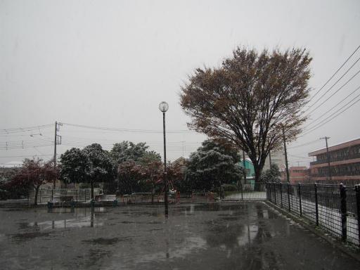 20161124・11月なのに初雪1-14・7時06分