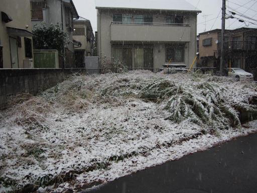 20161124・11月なのに初雪1-23・7時18分