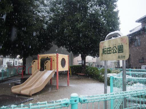 20161124・11月なのに初雪2-10・7時27分=桜田公園