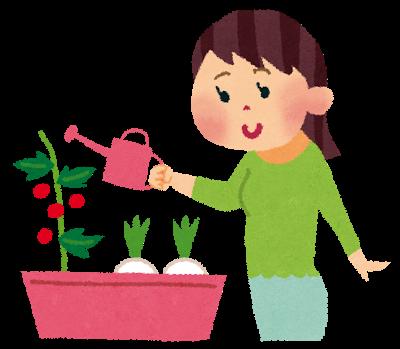 家庭菜園、ガーデニング