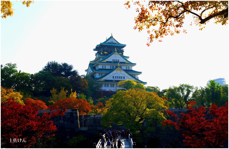 秋の大阪城3