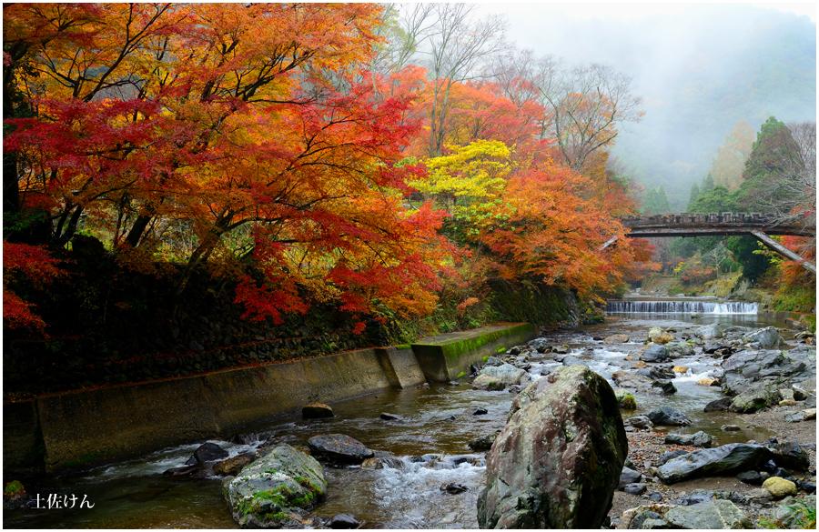 錦秋の京都2