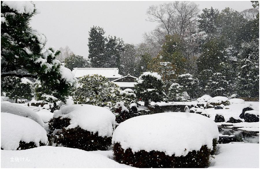 雪の京都3