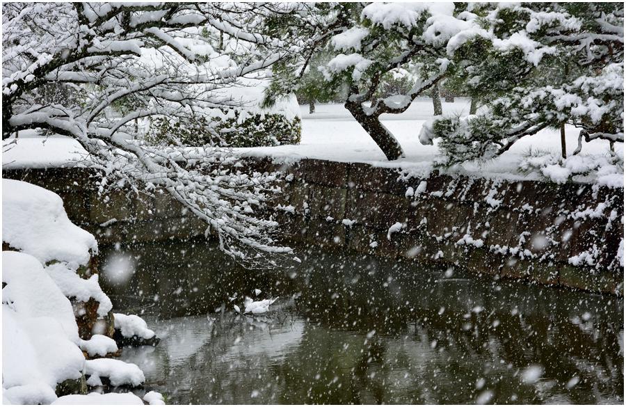 雪の京都・助手2