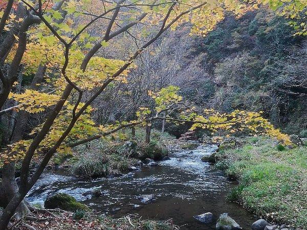 aramatakyo-komatsu-034.jpg