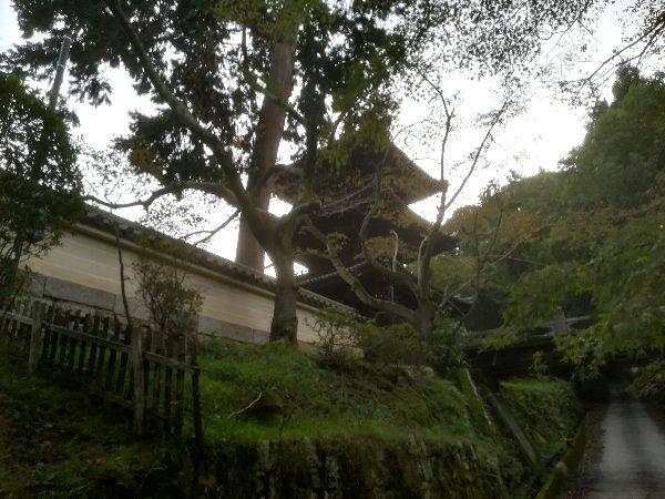 miidera-ootsu-027.jpg