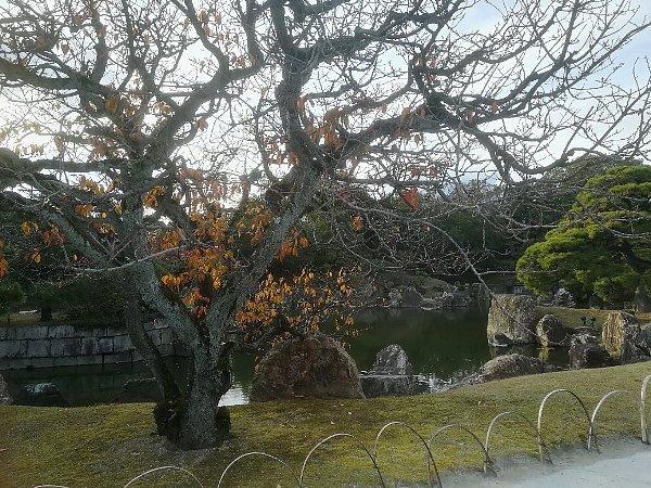 nijyojyo-kyoto-041.jpg