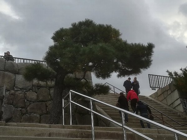 nijyojyo-kyoto-068.jpg