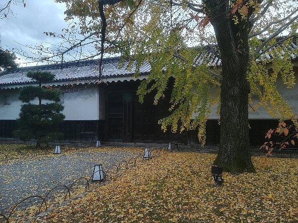 nijyojyo-kyoto-114.jpg