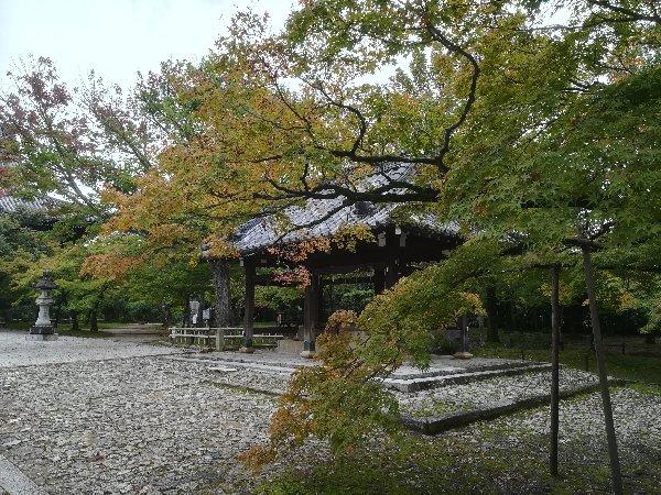 shinnyodou-kyoto-015.jpg