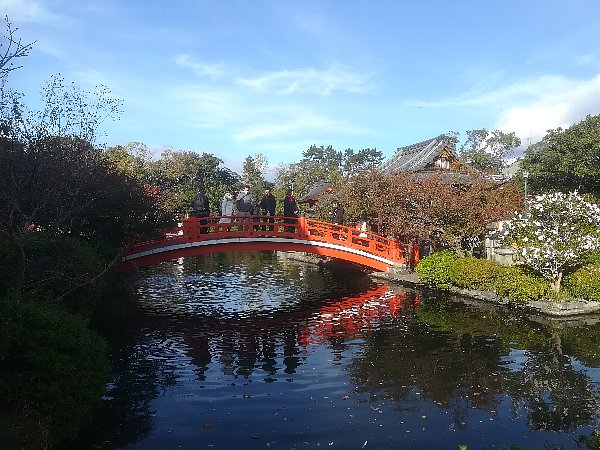 shinsenen-kyoto-017.jpg