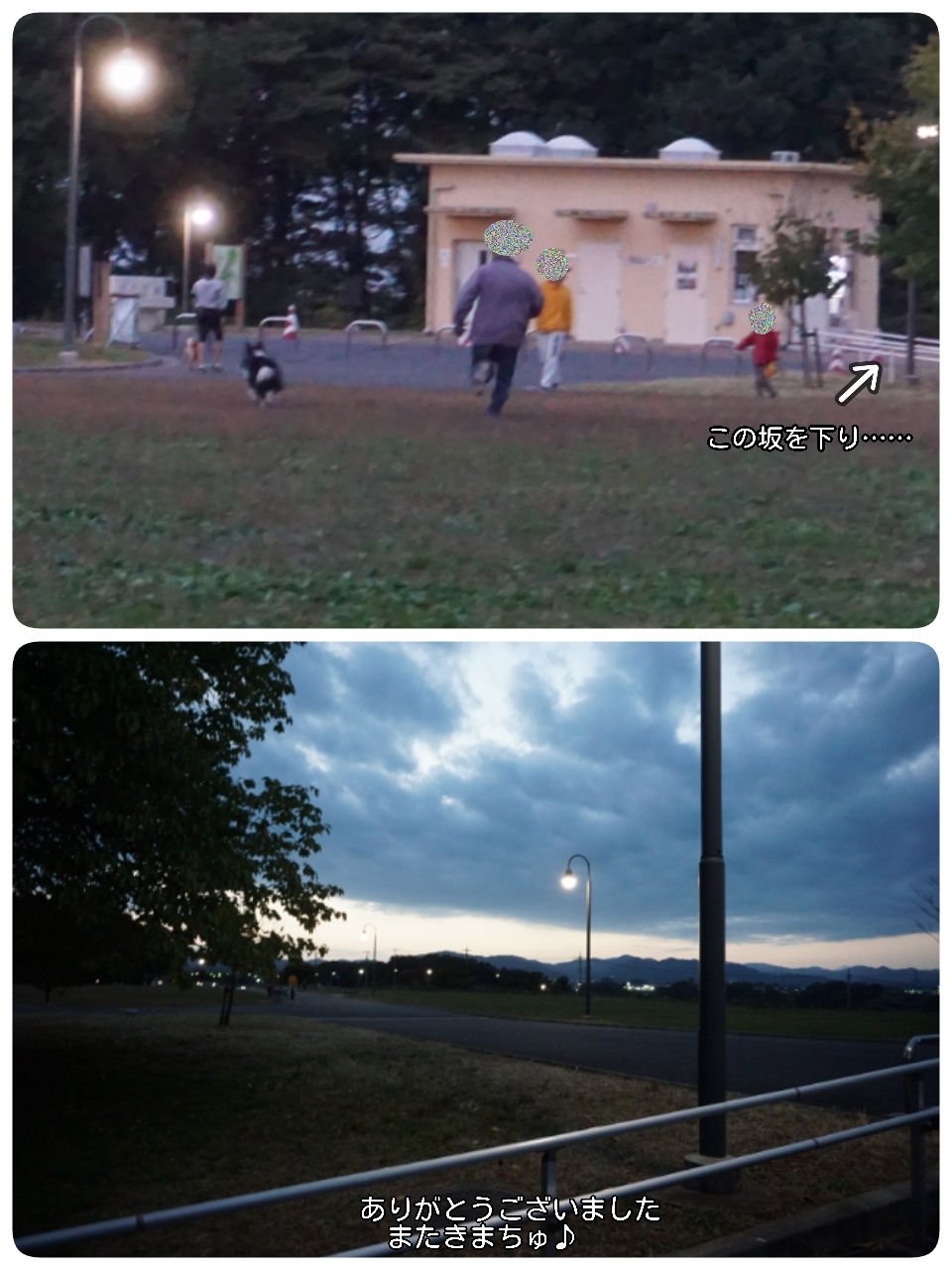 16-11-07-01-11-30-804_deco.jpg