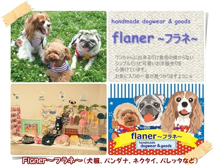 flaner_20170130213631752.jpg