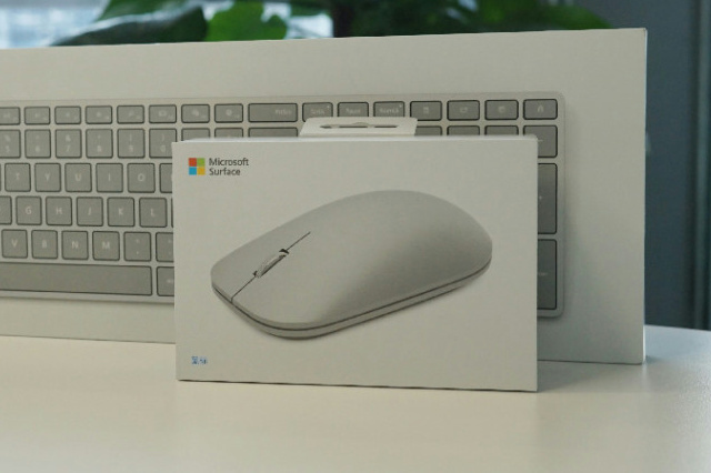 Surface_Mouse_02.jpg